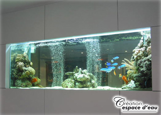 cr 233 ation et installation d aquarium mural encastr 233 grand format montr 233 al