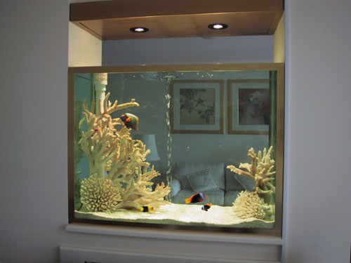 Cr Ation Et Installation D 39 Aquarium Mural Encastr Sur Mesure Montr Al